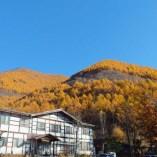 白い天然温泉の宿 福島屋の秋の外観