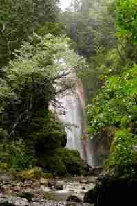 三本滝のー本沢