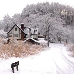 冬のウインズ外観