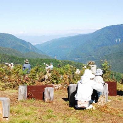 タカ見の丘