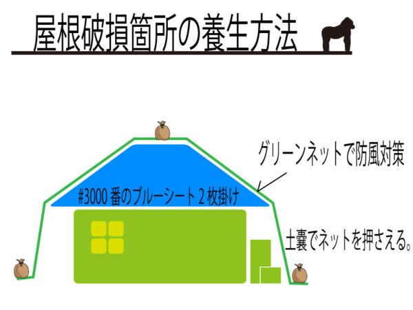 屋根破損対策 ネット