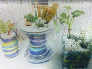 100均 カラーサンド ダイソー セリア 作り方 カラーサンドアート  観葉植物 固める 水やり 寄せ植え 植物 育つ サボテン 植え替え 多肉植物 作品例 動画 キャッキン 百均 100円 安い