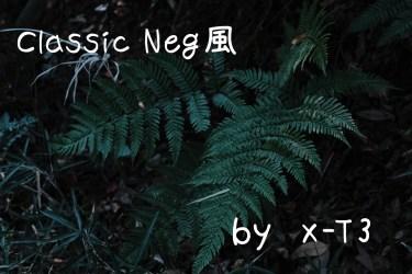 新フィルムシミュレーション「クラシックネガ」風カスタマイズをX-T3で試してみた