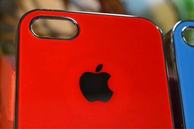 Appleマーク入りのiPhone5sケース1