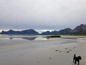 Reisen mit Kind und Hund – Strände auf den Lofoten