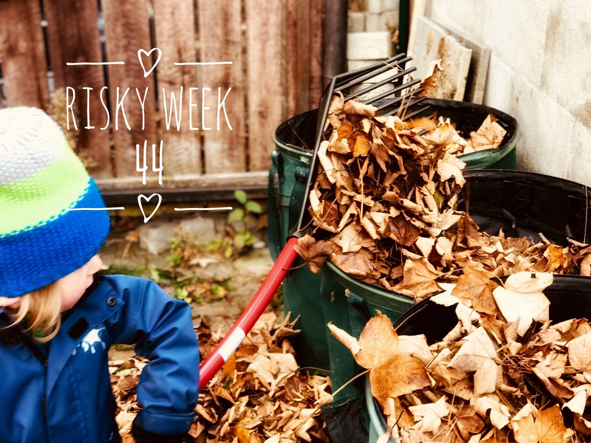 Risky Week 44 – Merlin bei der Gartenarbeit