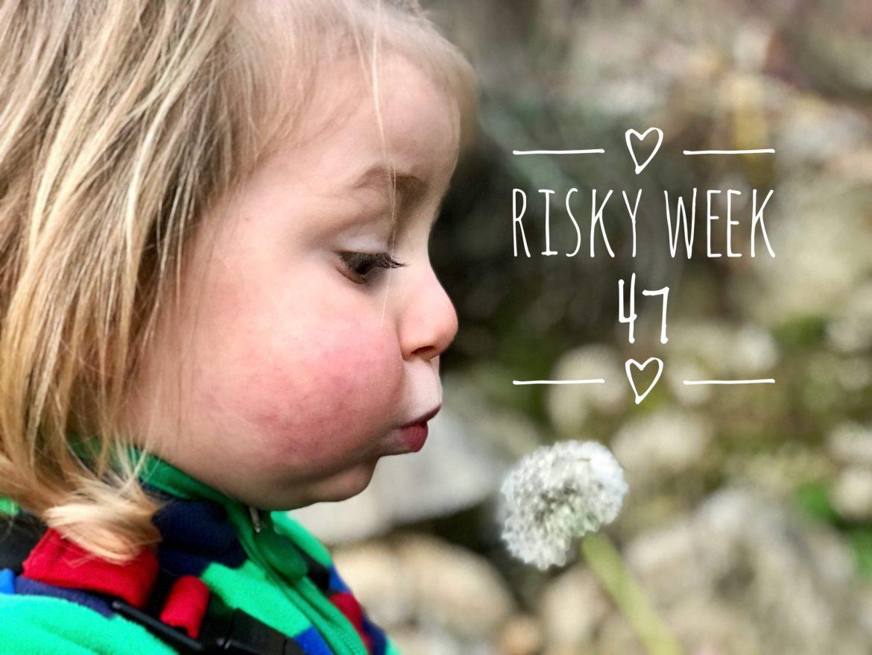 Risky Week 47 – Merlin und die Pusteblume