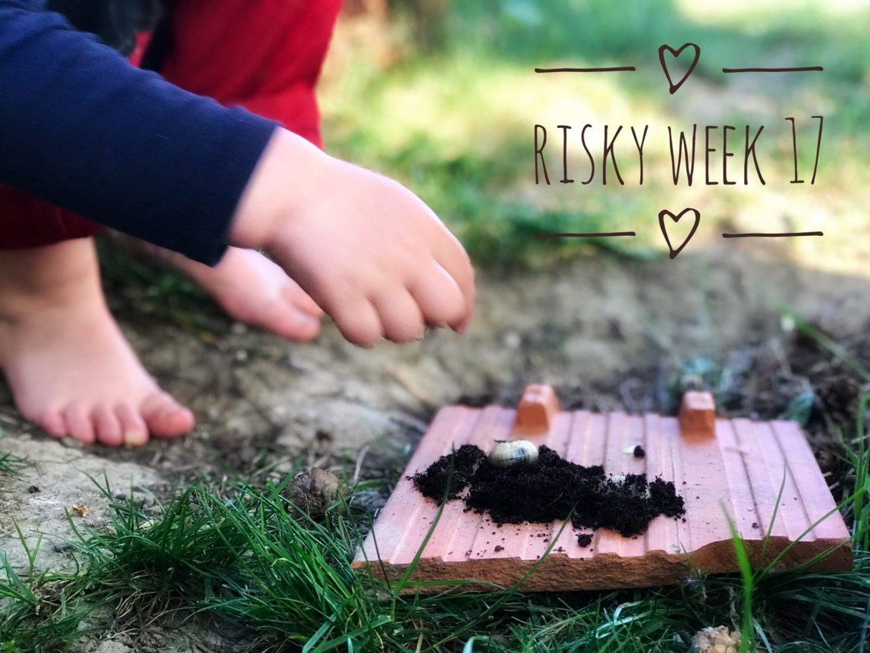 Risky Week 17 – Merlin staunt mit seinem Freund über die Würmer im Kompost