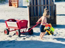 Liebe – Merlin spielt am Strand