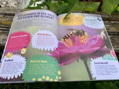 Arena_Verlag-Blüten-entdecken