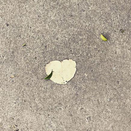 Archipielago de corazon