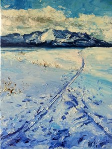 Snowy Upper Truckee Meadow