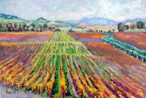 sonoma-vineyard-lg