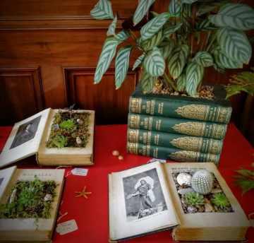 Dimitris' Book Gardens