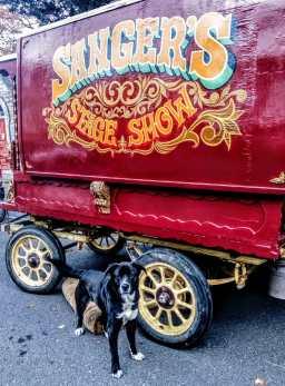 Dave Sanger's Wagon