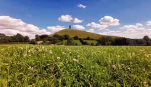 Glastonbury Tor from the meadow
