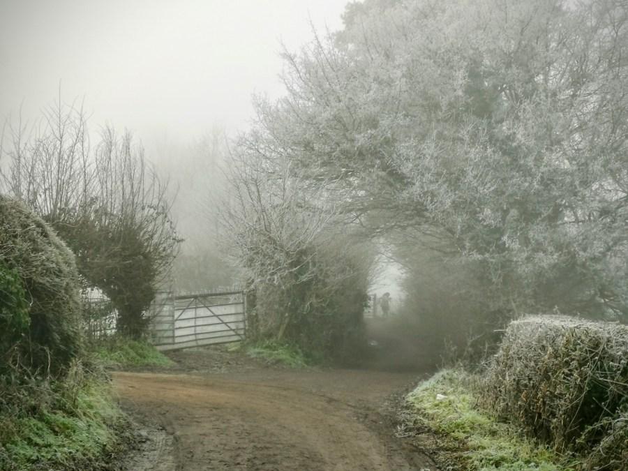 Bulwarks Lane Glastonbury