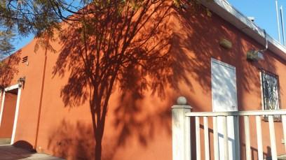 Dark Black Shadow of a tree against the bright orange side-wall of El Zarape Restaurant.