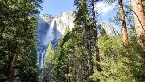 A view of both Lower and Upper Yosemite Falls