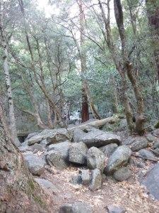 Fallen rocks along the trail