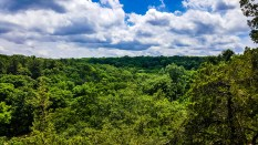View from Starved Rock