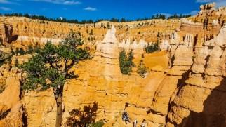 Hoodoos and rock formations
