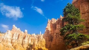 The hoodoos we had only looked down on are now rising up above us as we hike downward