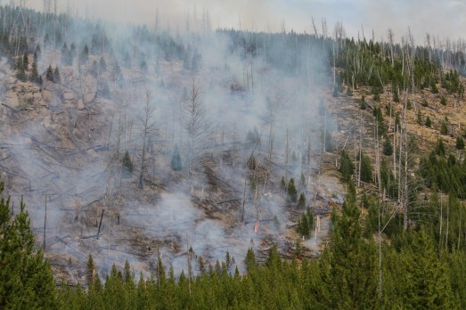 Smoldering wildfire near Yellowstone National Park