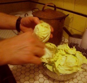 peeling_cabbage