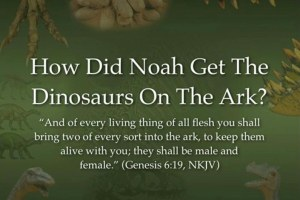 How Did Noah Fit The Dinosaurs On The Ark?