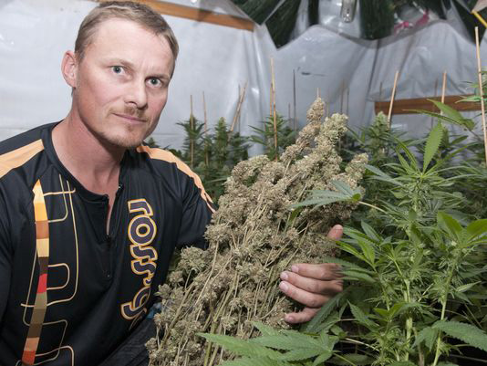 Snowboarder and Olympian Ross Rebagliati with some medical marijuana.