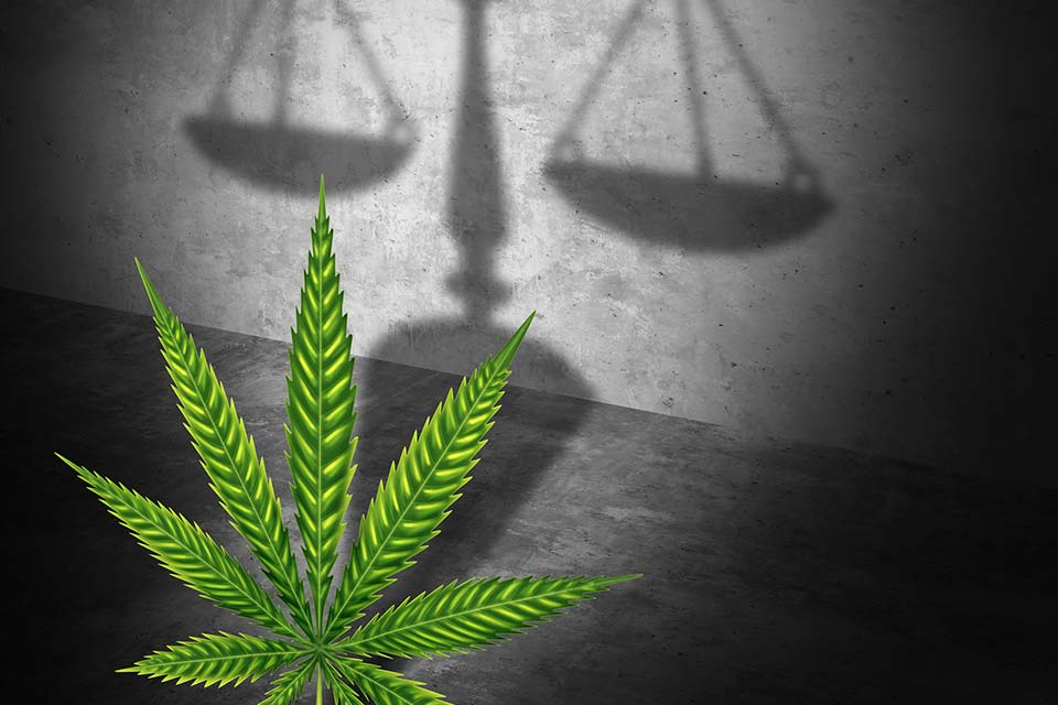 AG Nominee: Interfering in States with Legal Marijuana Not a Good Use of Justice Department Resources