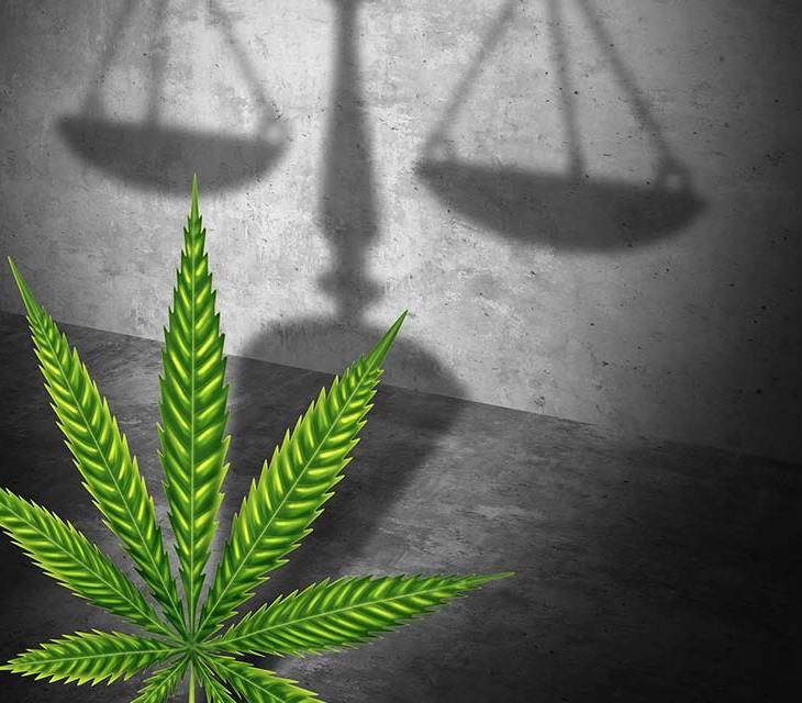 Marijuana and Justice