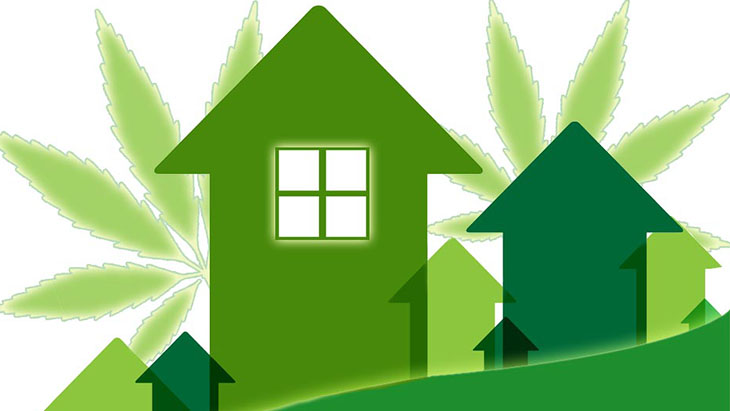 Marijuana Home Value Research