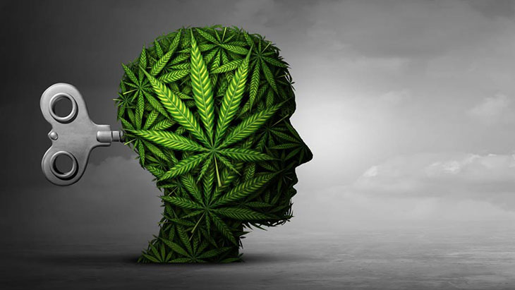 Cannabis Learning