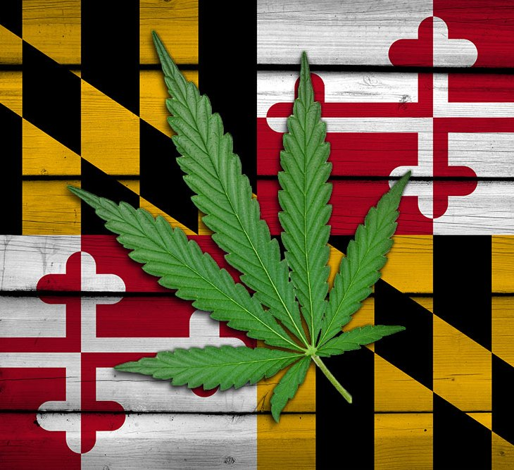 Maryland Marijuana Laws