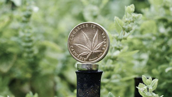 Marijuana Medal