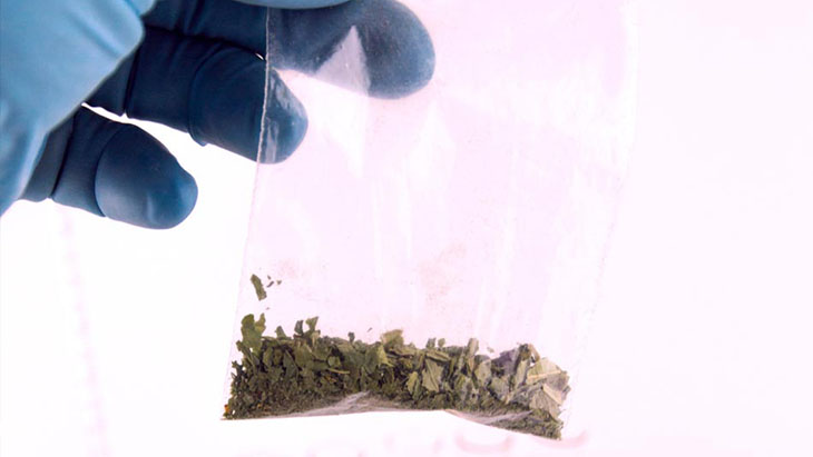 synthetic marijuana in bag