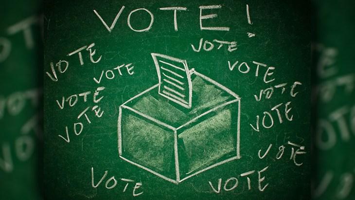 Vote for Marijuana Initiatives