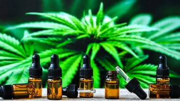 Plant-derived Cannabis Oil