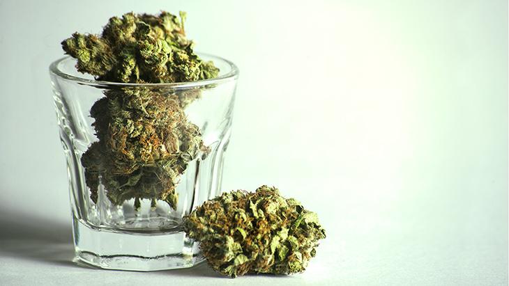 marijuana-bud-glass.jpg?fit=730%2C411&ss