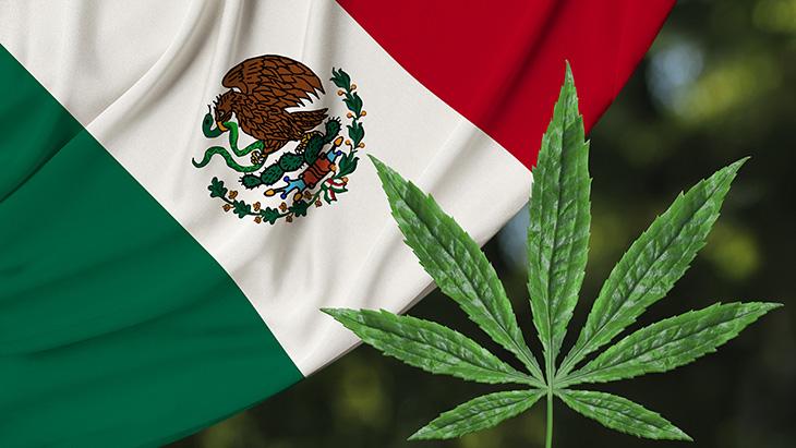 Mexico Marijuana Laws