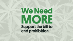 Support the MORE Act