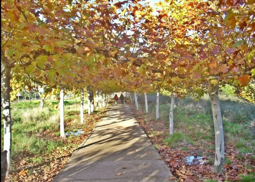 otoño norte Extremadura