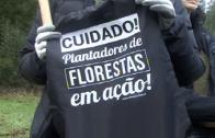 Plantação Arvores Laundos 2016 – 2