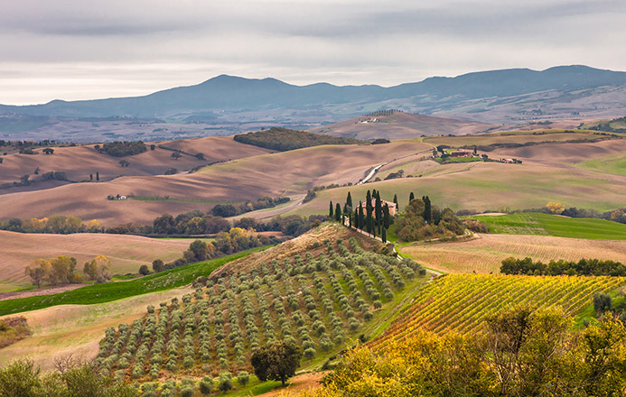 путешествие с детьми в Италии Тоскана