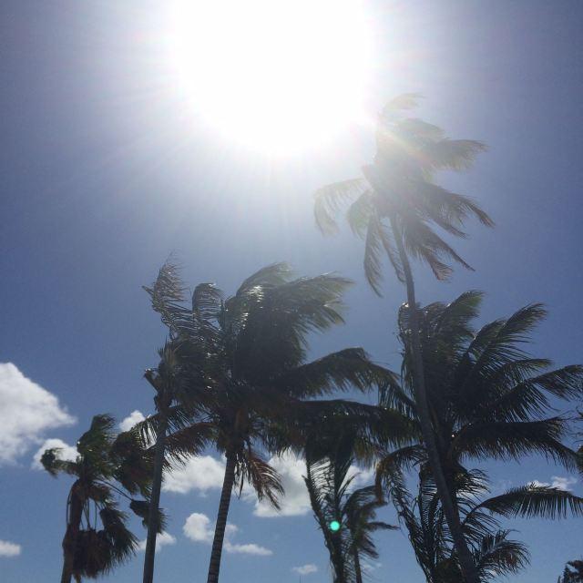 Bahamas21