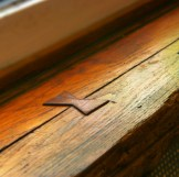 Window sill detail