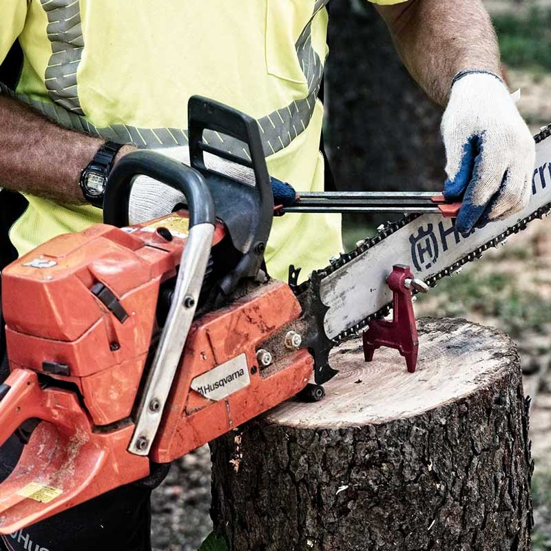 Chainsaw Safety and Cutting Techniques  North American