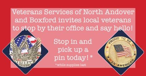 veterans pins.jpg